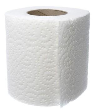 Embossed 2ply Toilet Paper