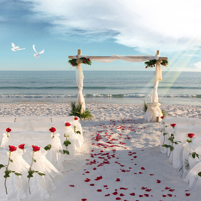Beach Wedding Altar Decorations: Beach Wedding Altar 5x7ft Photography Background Backdrop