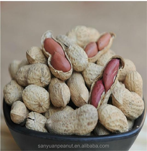 Processing Type Wholesale Organic Raw Peanuts In Shell with peanuts 1kg price