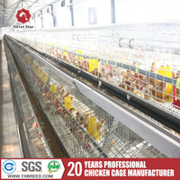 quail broiler battery cage with poultry farm equipment