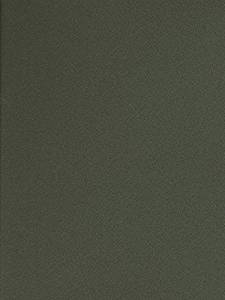 Canson Mi-Teintes Tinted Paper (Ivy) - 19 In. x 25 In. 4 pcs sku# 1835365MA