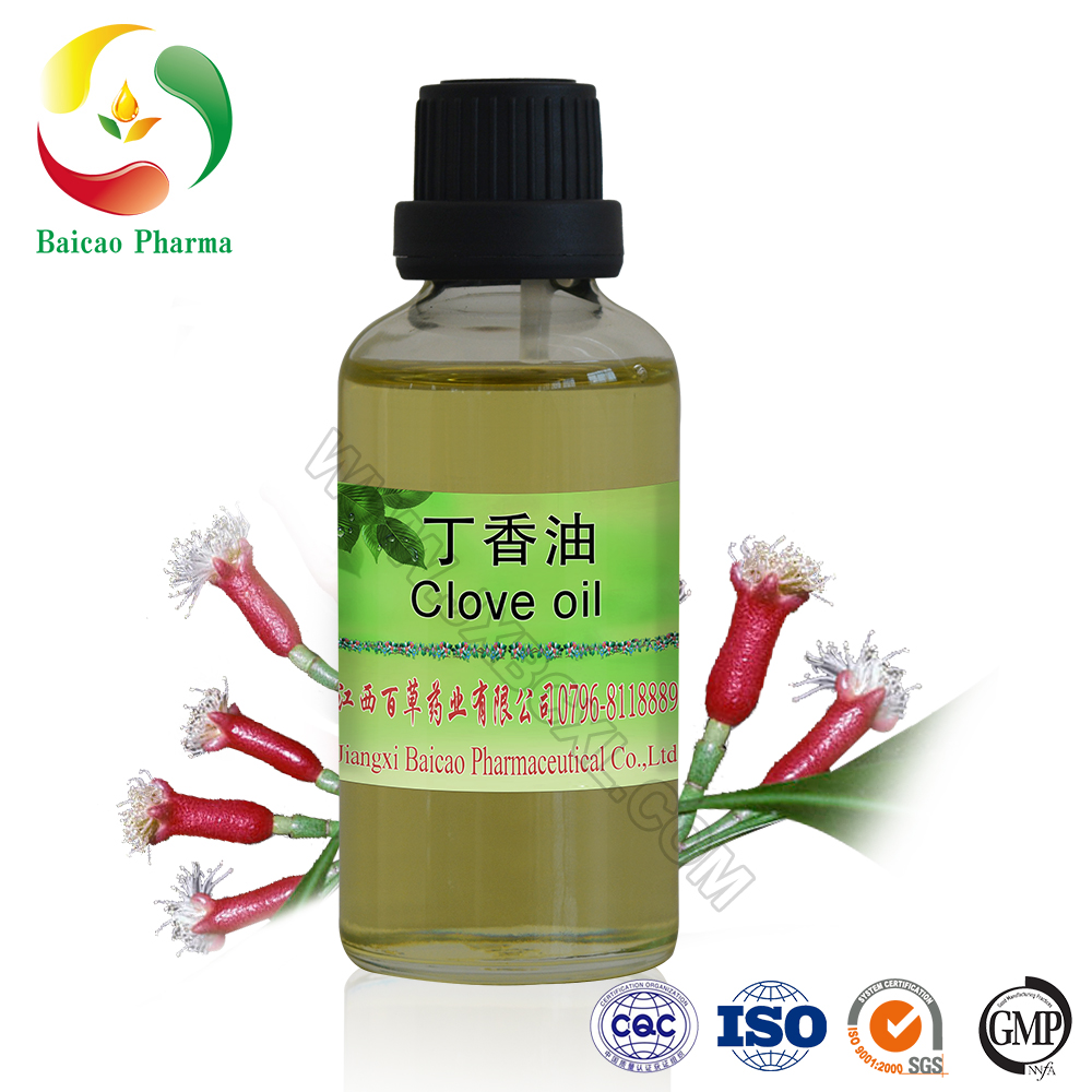 OEM Clove Leaf Essential Oil, Clove Oil Price