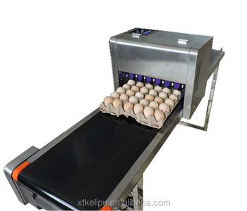 Black Ink  Egg Date Printing Industrial Inkjet Printer