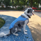 Wholesale Custom New Design Colorful Summer Dog Cooling Vest Coat Functional Pet Clothes