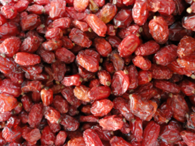 Watery and Dried Iranian Barberry