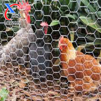 Factory Hexagonal chicken wire mesh fence / lowest price chicken wire mesh roll / chicken coop hexagonal wire for animals