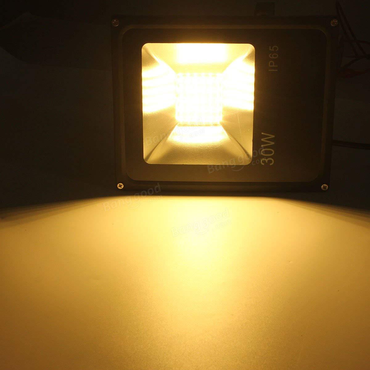 30W 5730 Outdooors Waterproof LED Landscape Flood Garden Lamp - Outdoor Lighting LED Flood Lights - (Warm White) - 1 X LED Flood Light