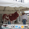 OA3382 Latest Style High Quality Life Size Bull Statue