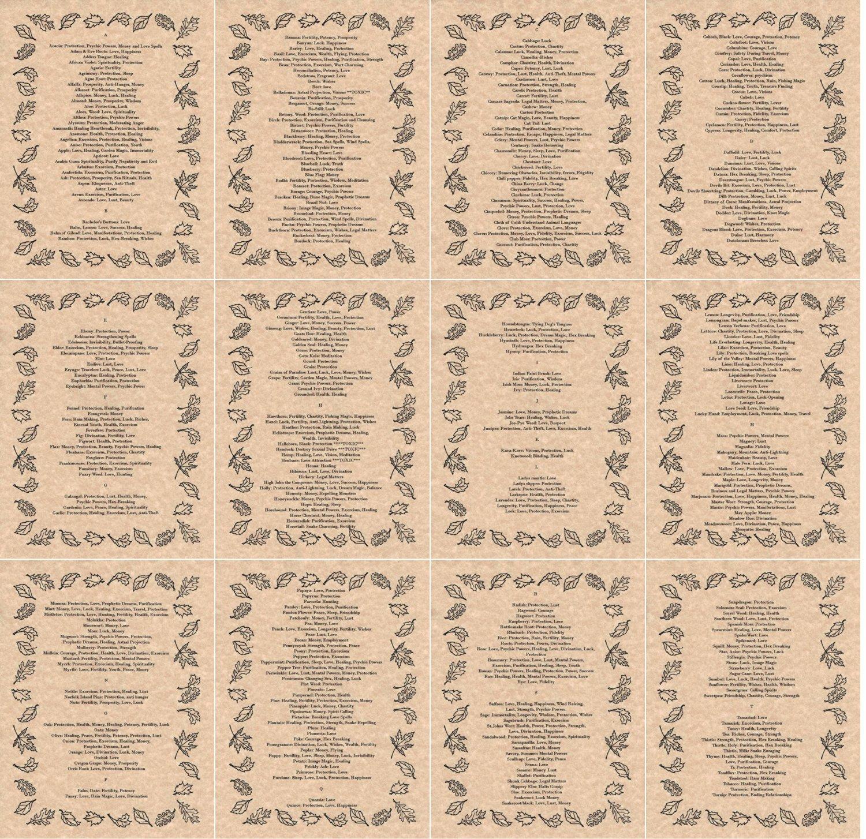 Buy Bundle - 25 Herbalism Book of Shadows Pages - Incense