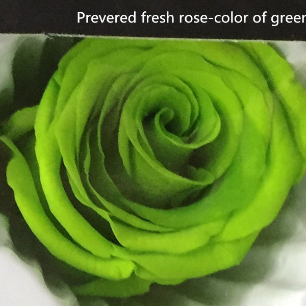 Wholesale preserved flowers natural real touch preserved roses ...
