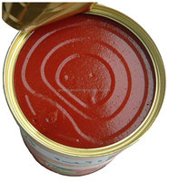 Tomato paste 70g 210g 400g 2200g China factory for Africa import
