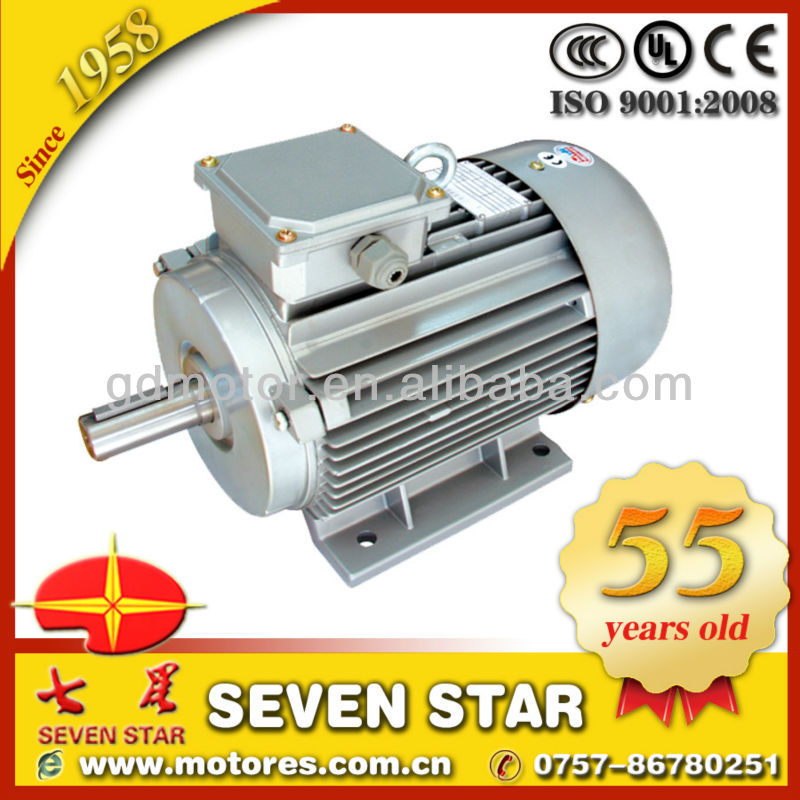 Y2 Series special marathon electric motor