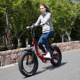 Good Price folding bike electric bicycle folded 48v