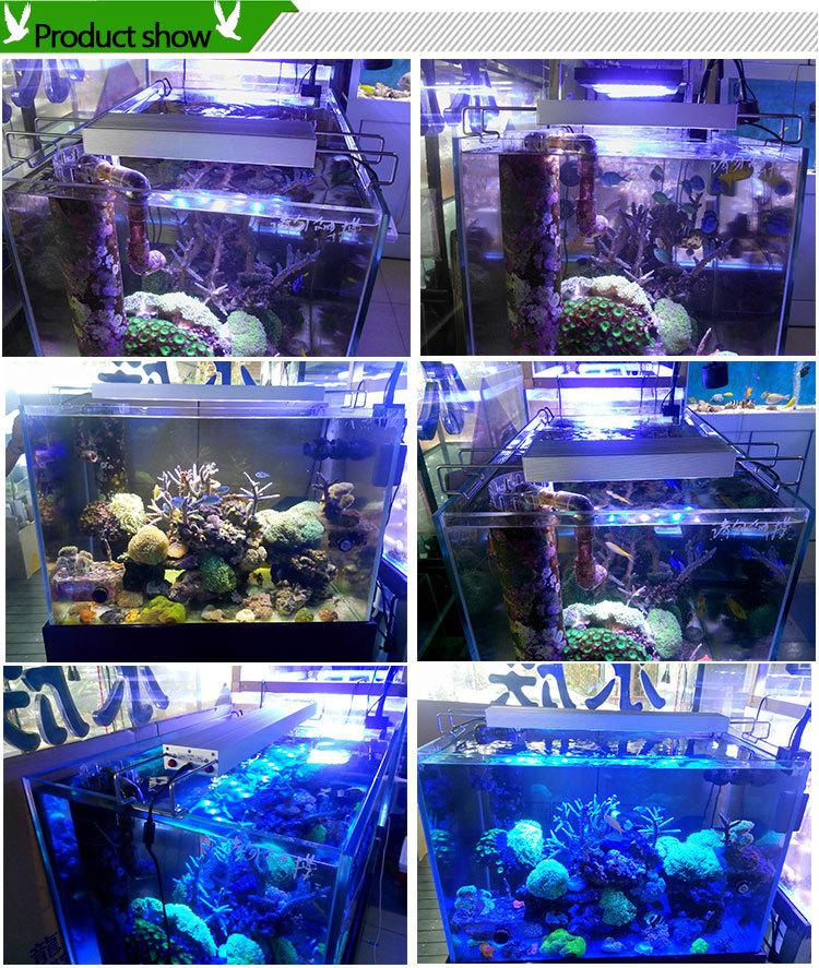 Fish Tank Freshwater Marine Coral Reef Led Aquarium Light Led ...