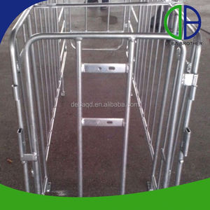 Galvanized Pig Breeding Equipment