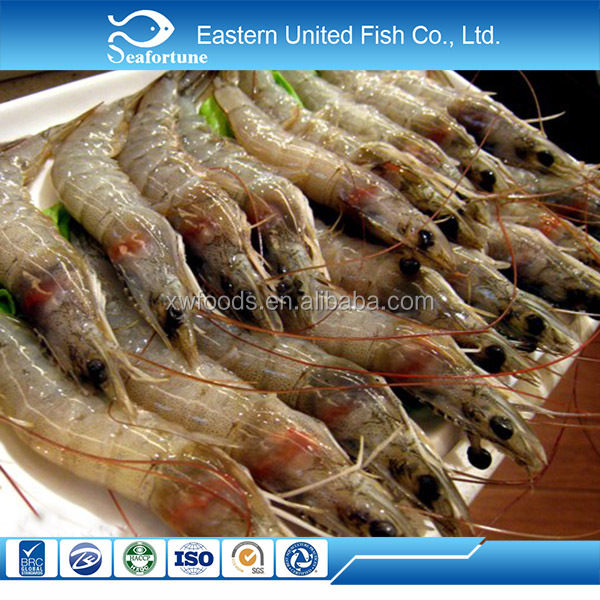 china seafood wholesale health fresh white shrimp