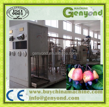 Complete Cashew Apple Juice Production Line / Cashew Apple ...