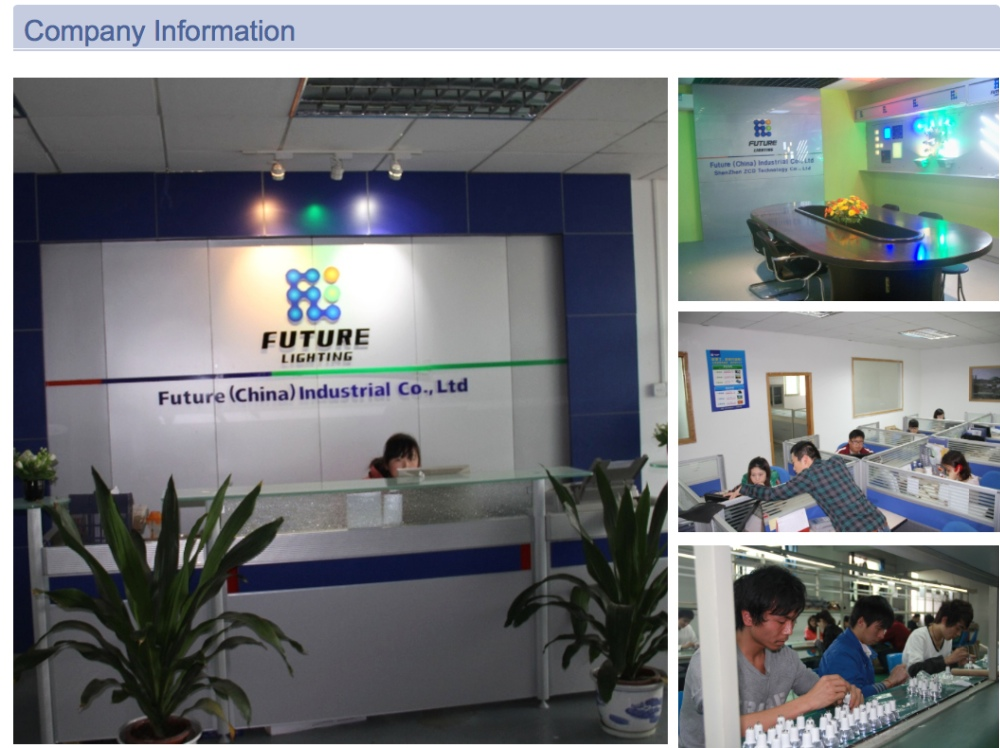 Company infomation of Future Lighting