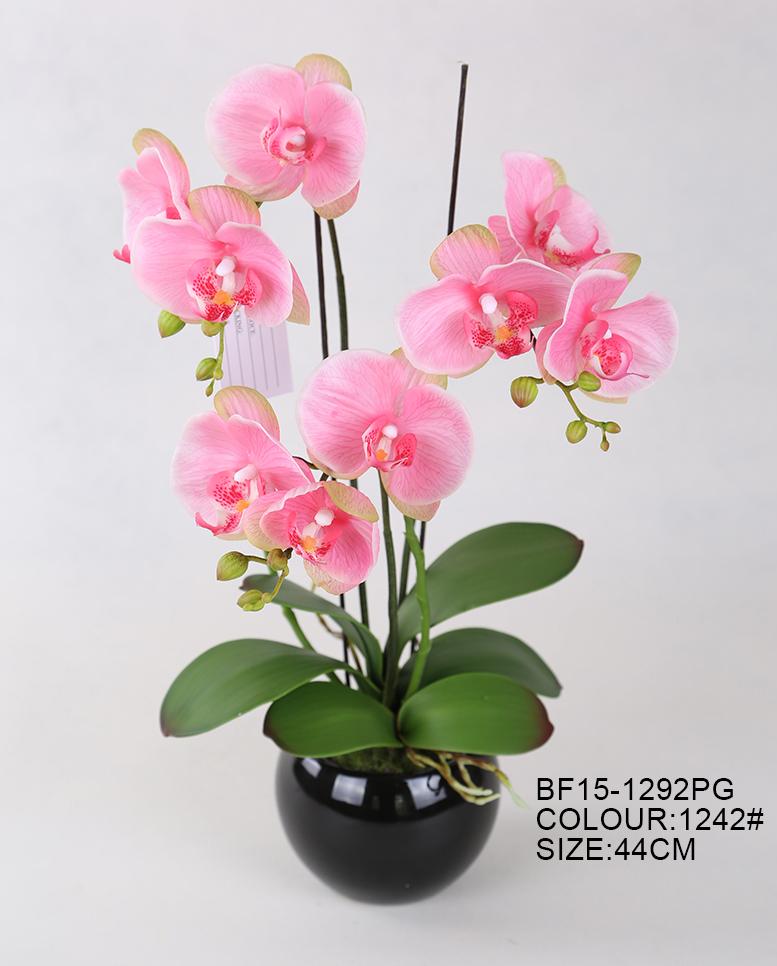 Comercio Al Por Mayor De Moda Rosa Real Touch Artificial Phalaenopsis Orquídea Flores Para La Decoración De La Boda Buy Flores Artificialesnatural