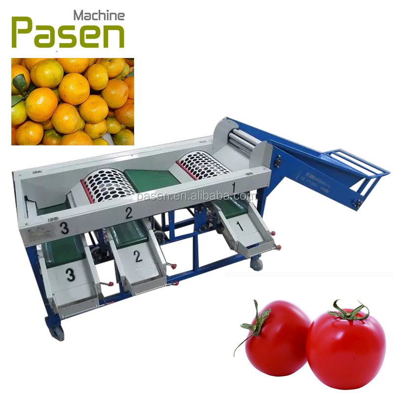 multi-functional orange apple and tomato grading machine