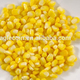 Canned Sweet Corn Whole Sale Factory With Competitive Price OEM Brand