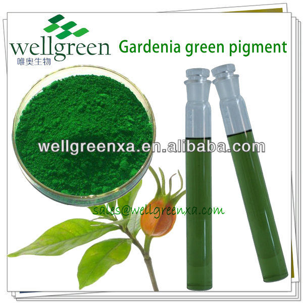 wellgreen nourriture naturelle coloration gardnia vert - Colorant Alimentaire Naturel Vert