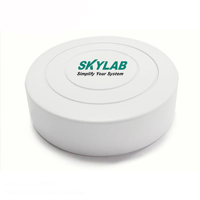 SKYLAB nRF51802 ble gateway iot wholesale ibeacon eddystone beacon for Asset tracking