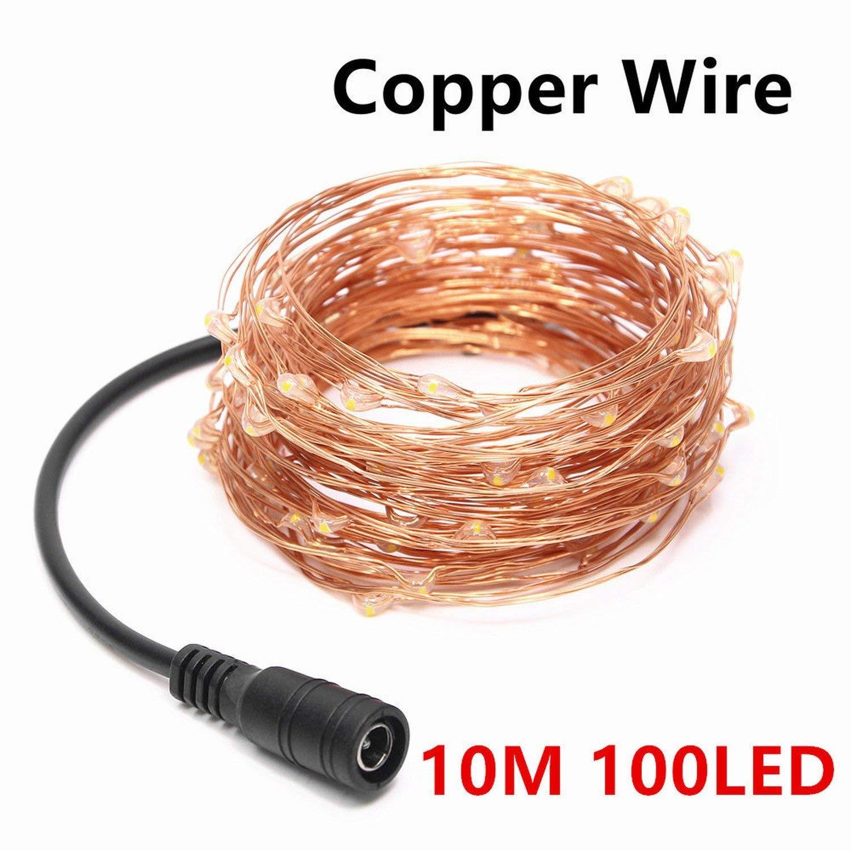 Processes LED String Light 5M 10M 20M 30M 40M 50M DC12V Waterproof Silver Copper Wire,10M Copper Wire,Warm White