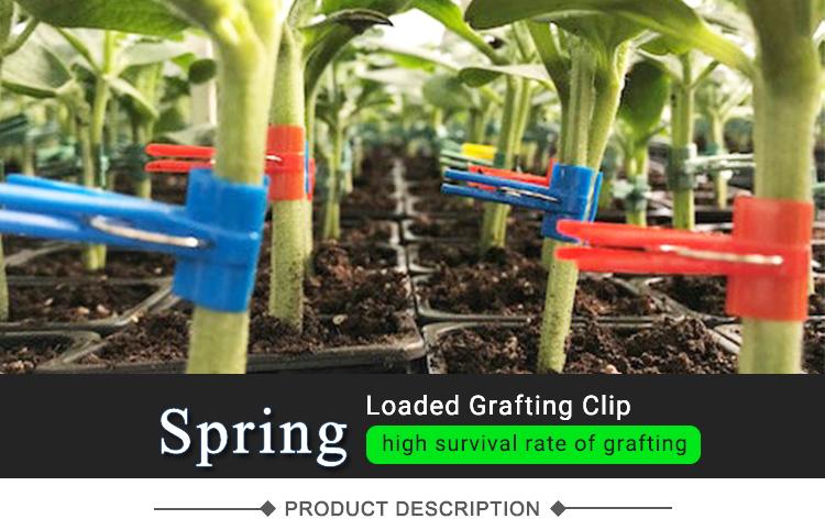 ガーデンプラスチック春の植物のサポートクリップ