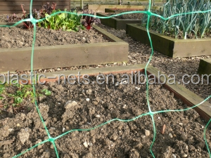 1.2m x 1.2m Plant Support Grow Tent Netting/pp scrog mesh cucumber netting : grow tent netting - memphite.com