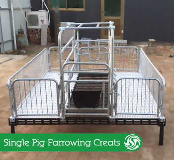 Pig Equipment Single Sow Free Stall Farrowing Grates