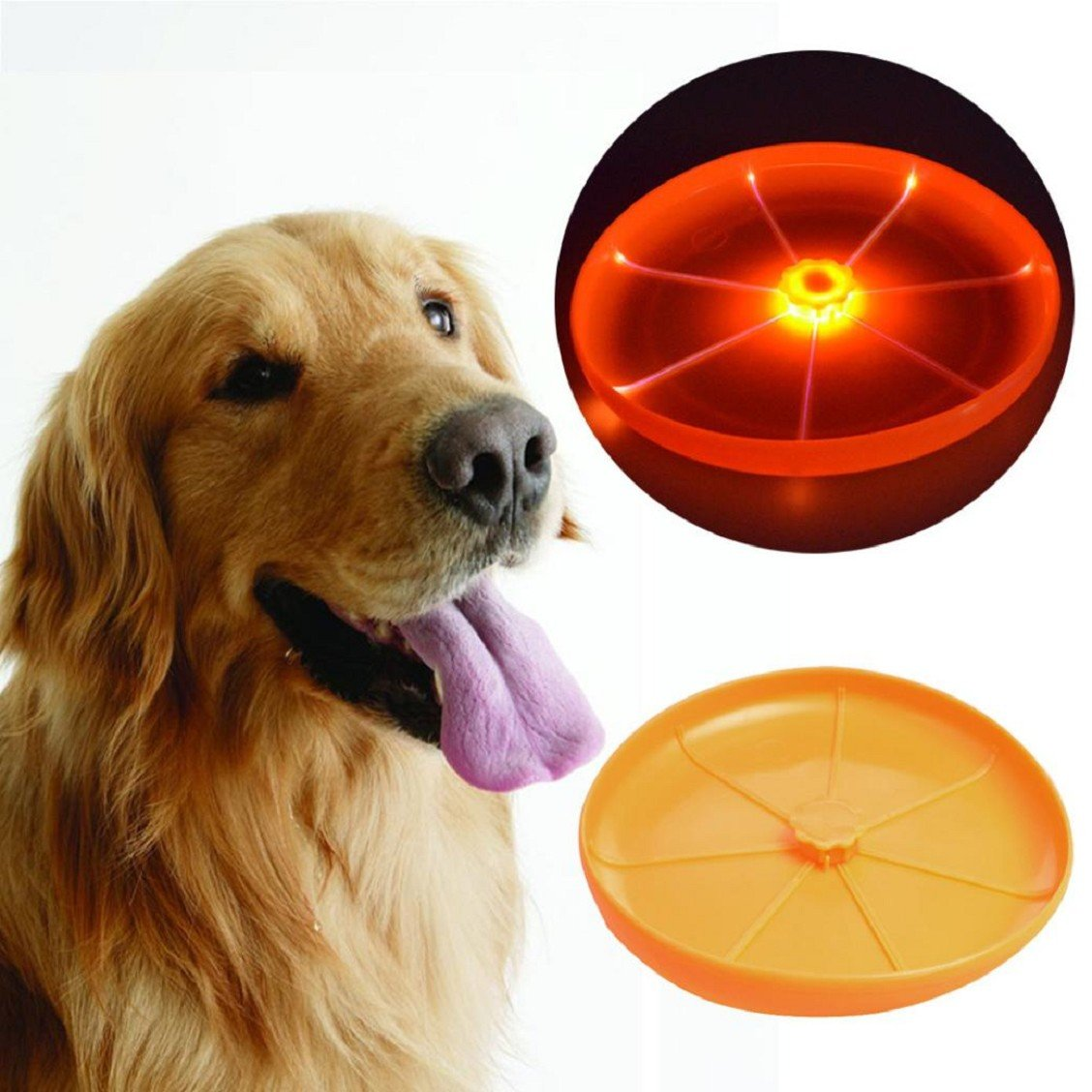 Light Up Frisbee for Ultimate Night Time Play Wandrola Flying Disc Dog Sport Toy with Flashing LED Lights Blue