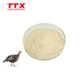 Feed additives xylanase enzyme for poultry