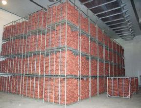 frozen steel structural cold storage warehouse