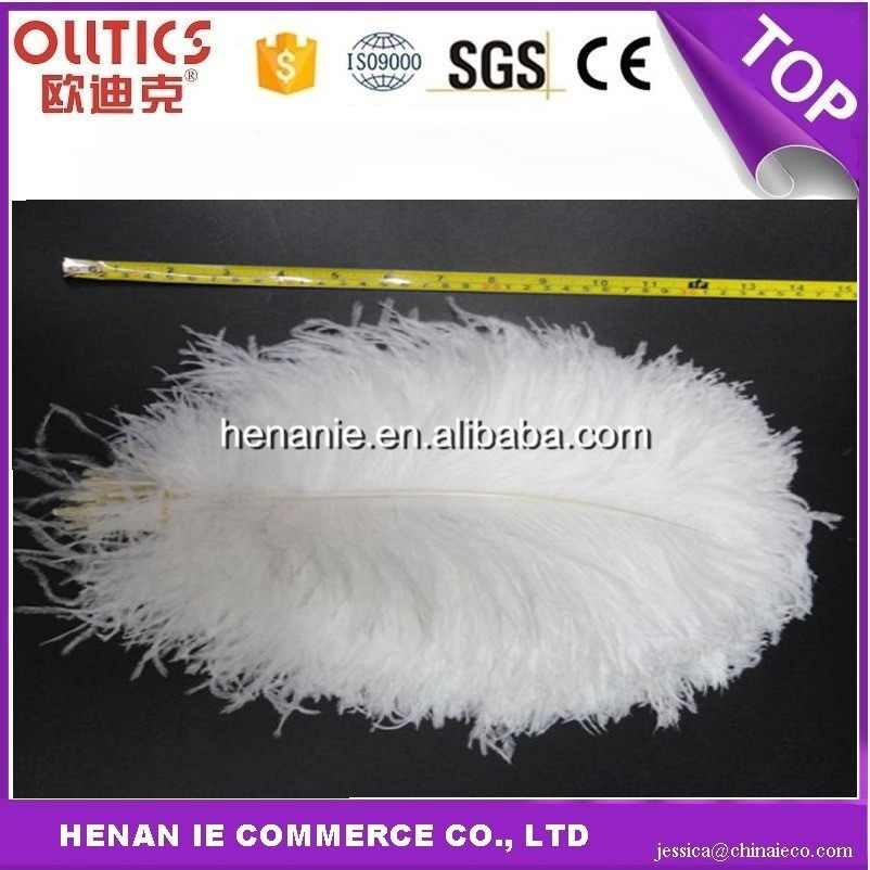 Real natural plumage cheap white and dyed ostrich feathers for Party Decoration