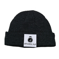 100% acrylic Thinsulate lining winter hat knitted beanies hats and caps men