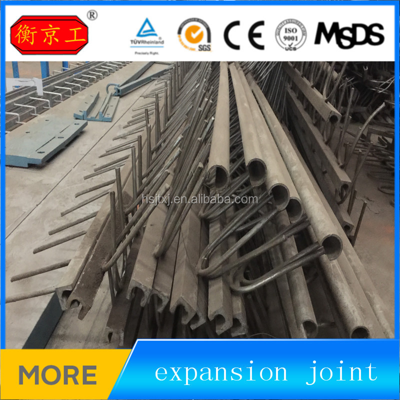Steel bridge expansion joint/ expansion joint device with large movement