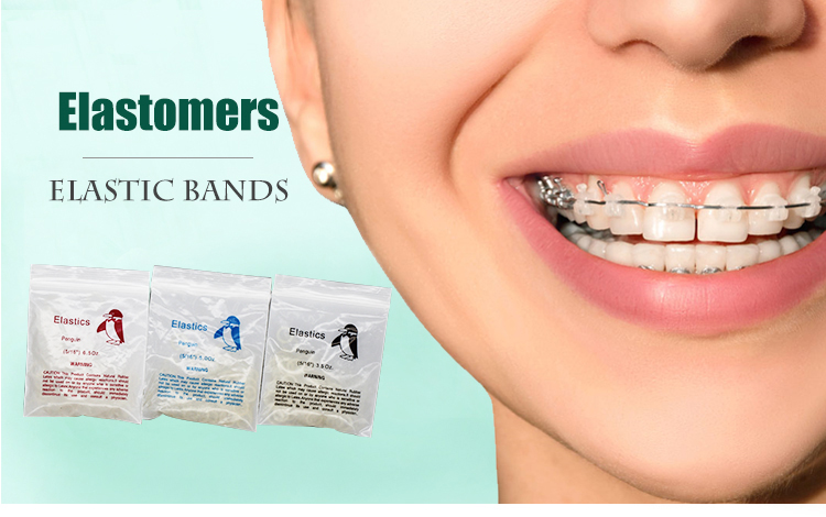 Ortho Braces Clear Orthodontic Animal Elastic Dental Rubber Bands