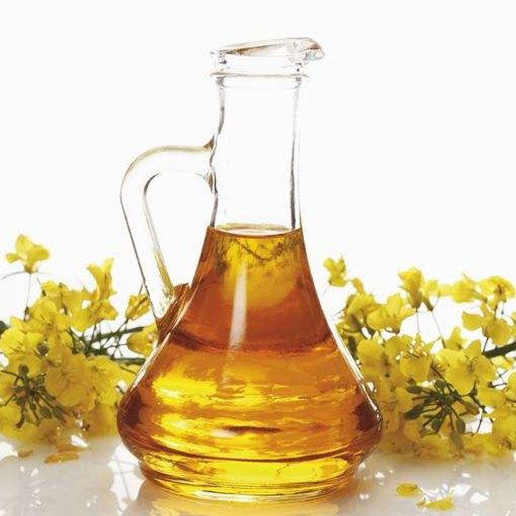Hot Sale Crude Degummed Rapeseed Oil