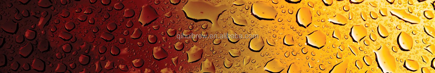 10BBL beer brewing equipment for turnkey brewery system