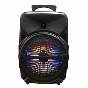 20W Audmic 8 inch rechargeable portable wireless BT party speaker outdoor with lighting