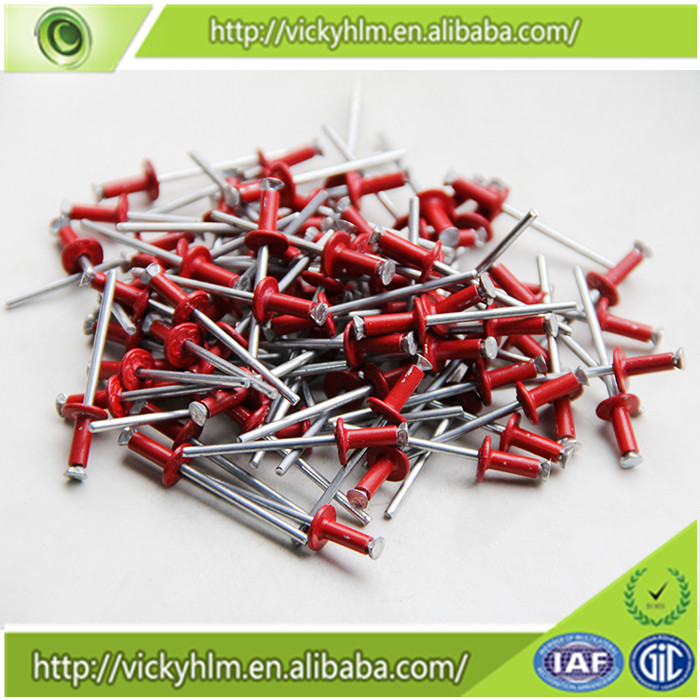 Alibaba Gold China Supplier Aluminum Pop Rivets Sizes,Color Pop ...