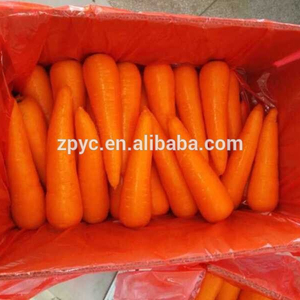 Chinese fresh carrot for sale