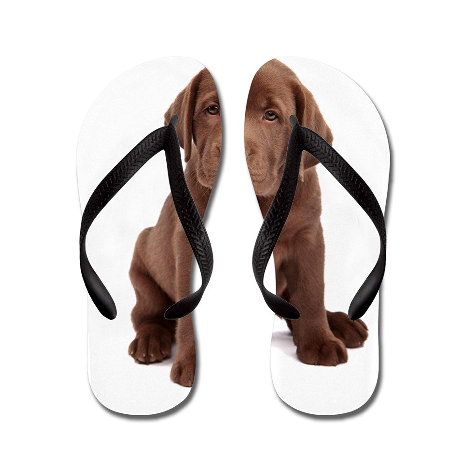 5be00a81b712 Get Quotations · CafePress Chocolate Labrador Puppy - Flip Flops