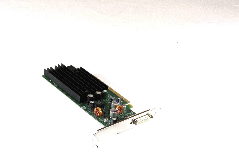 Genuine HP Nvidia P383 Computer Graphics Video Card 430965-001 430956-001