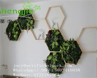 SJLJ09677 wonderful artificial plastic small plant wall for wall decoration