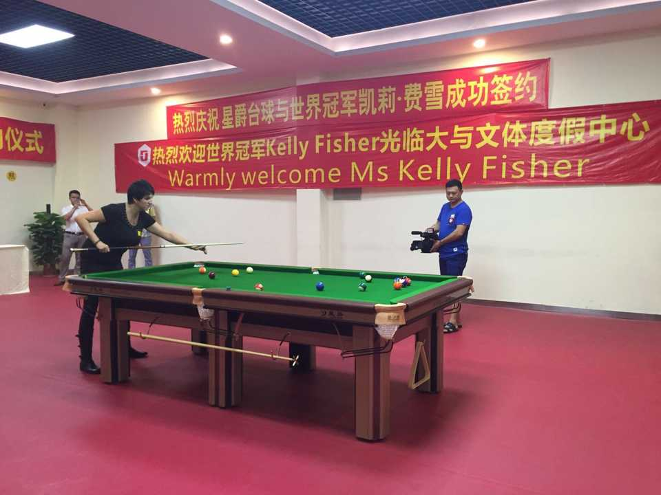 Professional Snooker Table Dimensions Made In China Buy