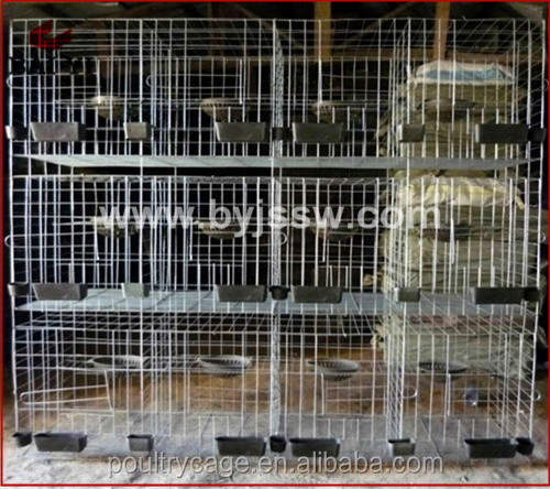 Top Quality Trade Assurance Fancy Standard Breeding Pigeon Cage