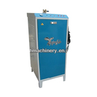 Professional laundry steam generator for clothes