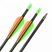 High Quality Insert Nock Plastic Vanes Wholesale Archery Arrows Carbon Arrow
